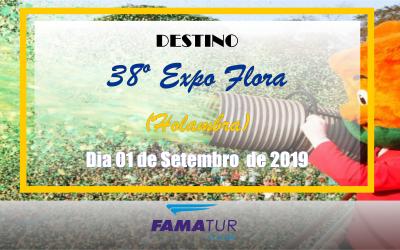 38º EXPOFLORA (Holambra)